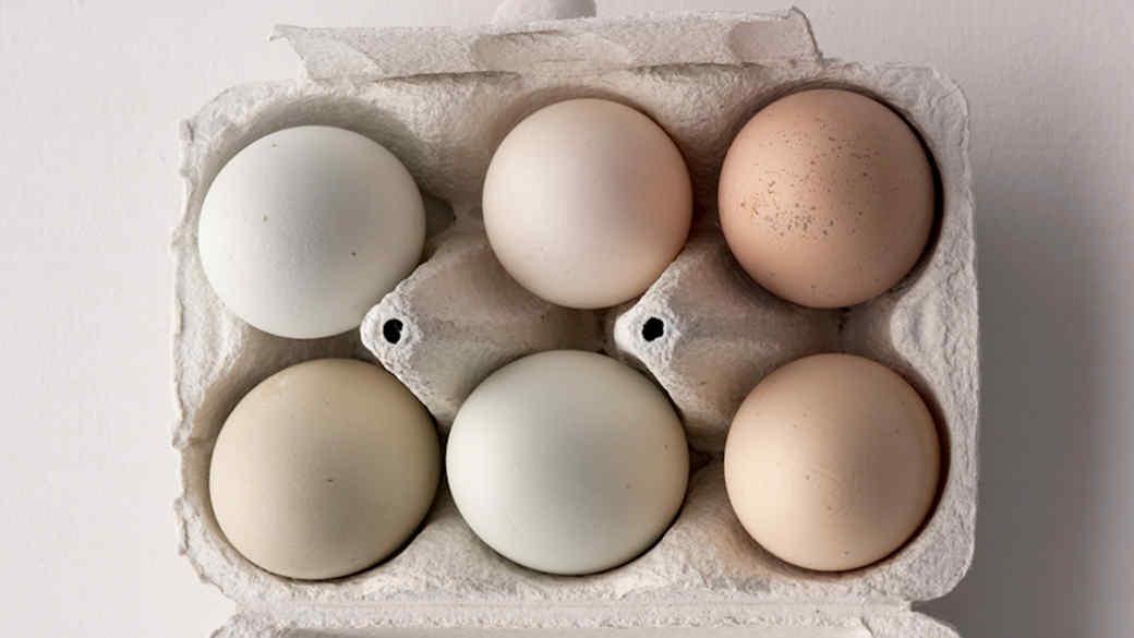 egg-carton-002-0814.jpg