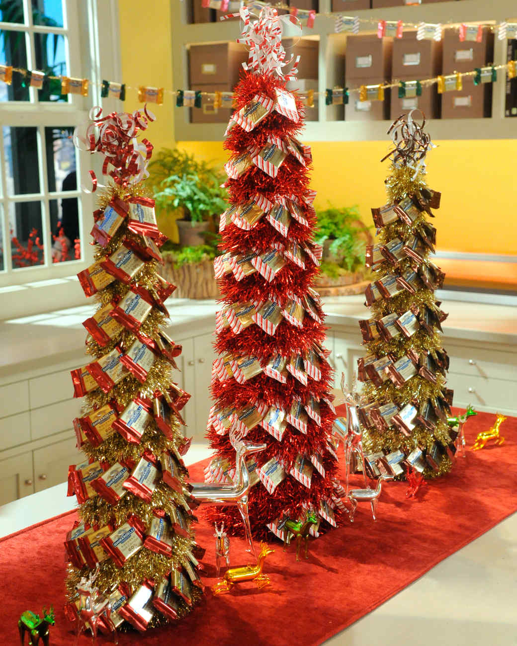 Chocolate Tree & Video | Martha Stewart
