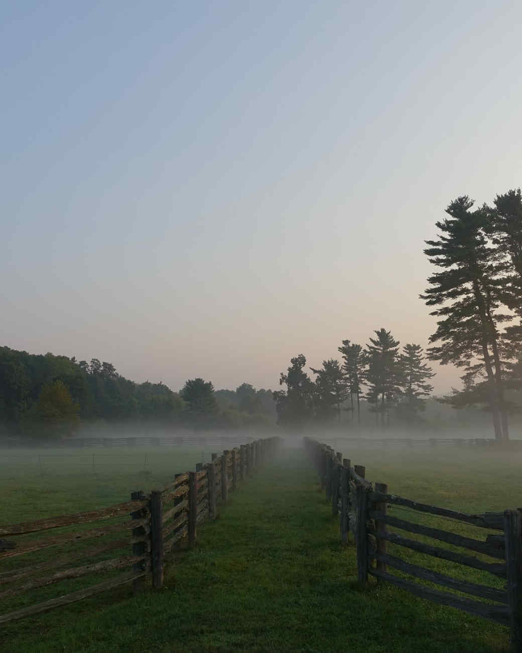 morning-fog-farm-08.jpg