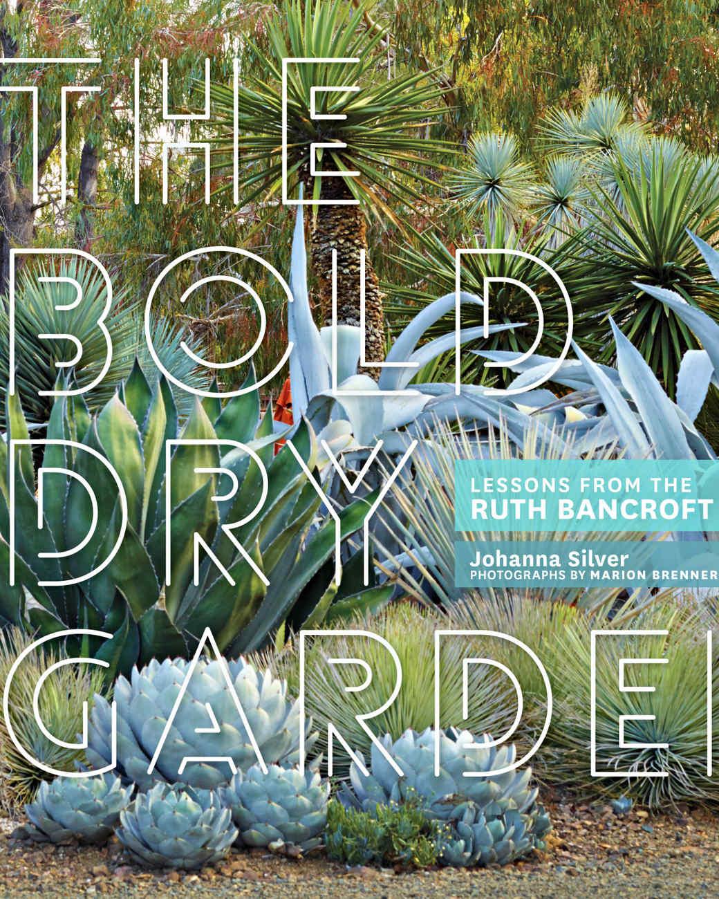 the-bold-dry-garden