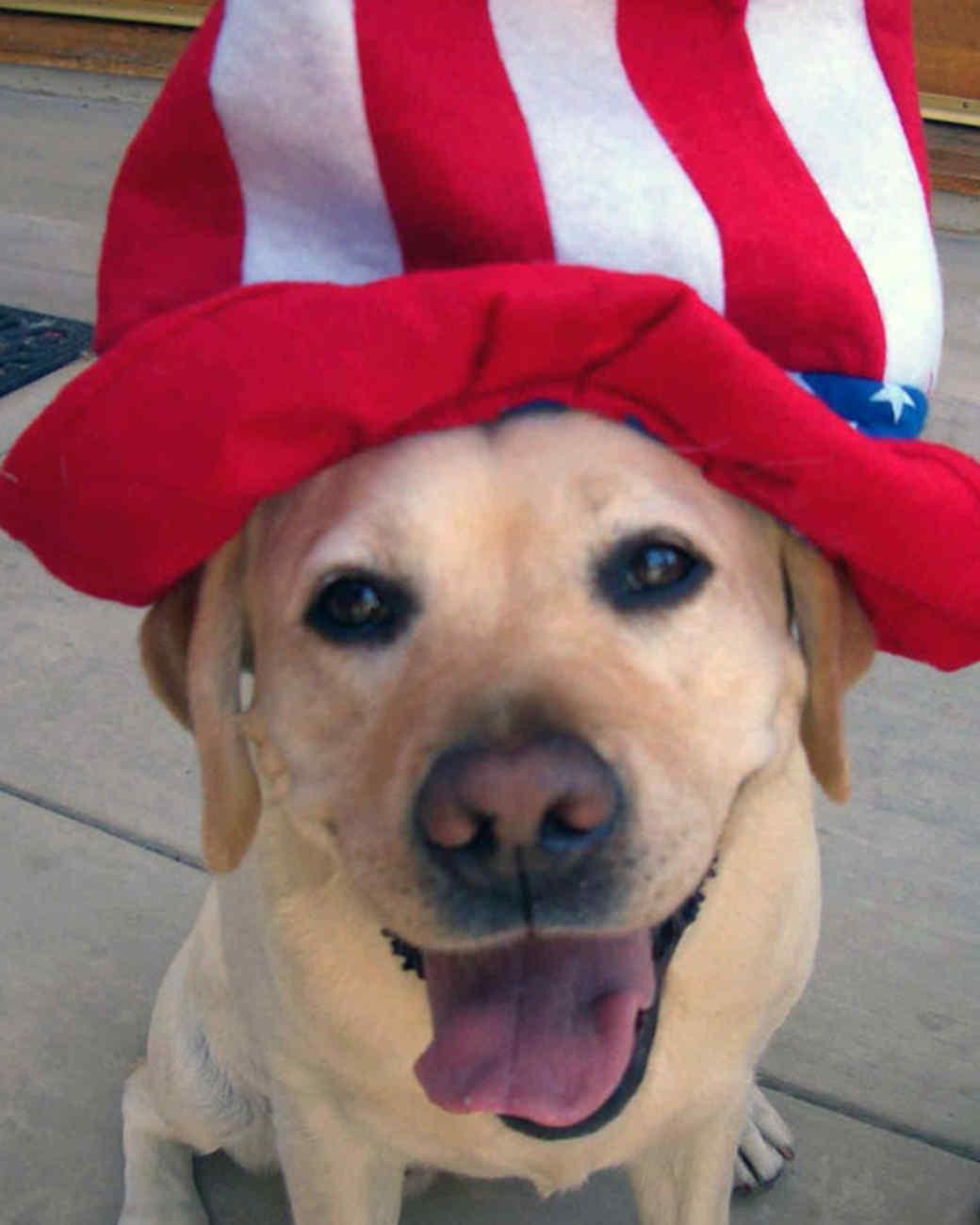 p_patriotic_09_91685.jpg
