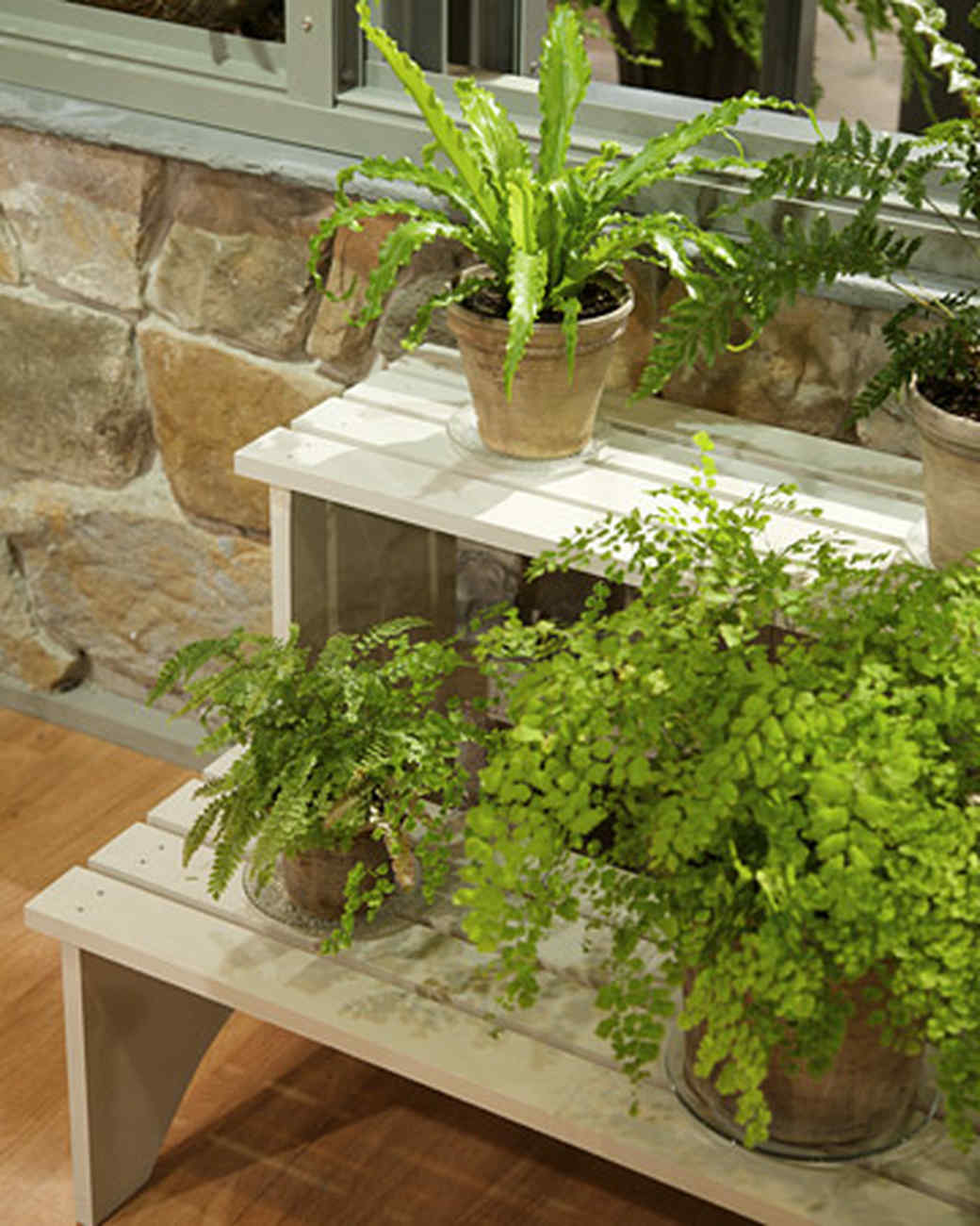 Tiered Plant Stand & Video