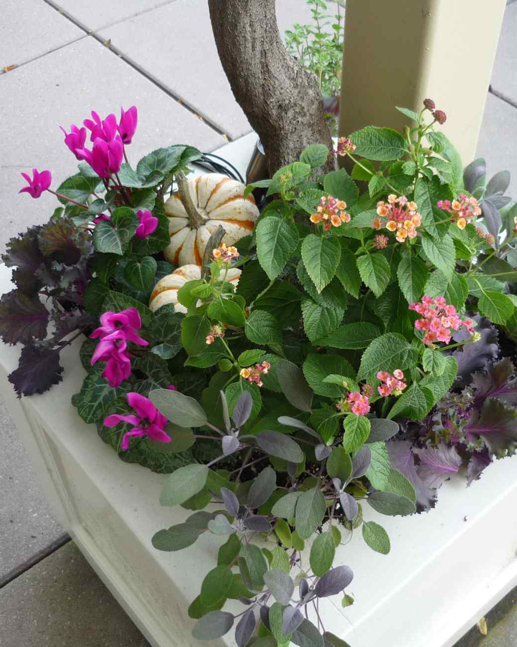 container-flowers-0315