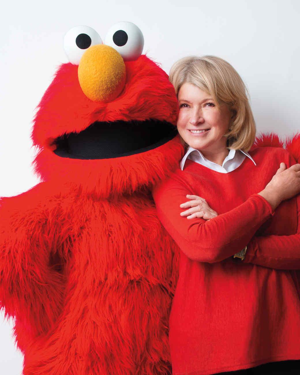 Celebrating With Elmo Birthday Party Martha Stewart