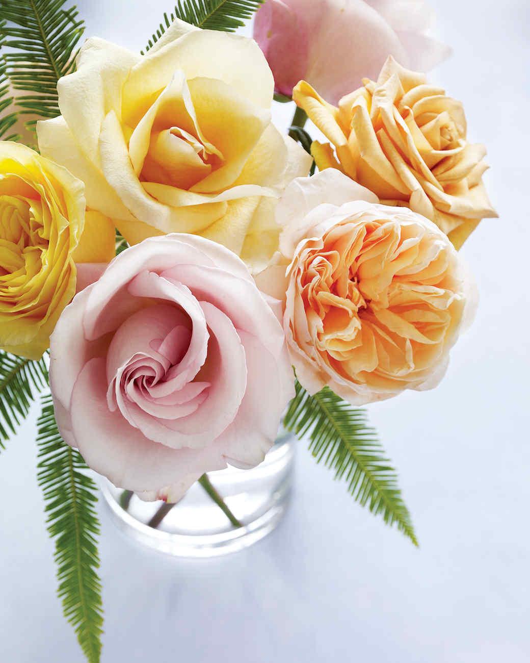 md104713_0210_roses_32.jpg