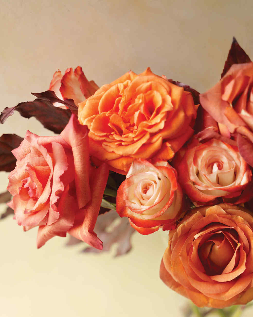 Orange Garden Rose rose arrangements | martha stewart