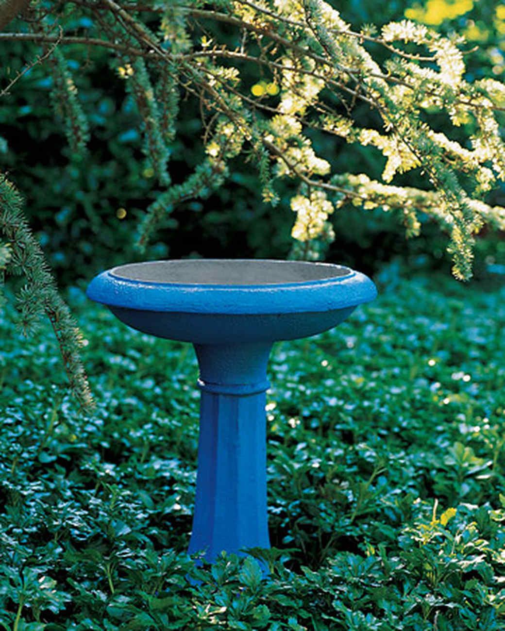 pa102693_0507_birdbath.jpg