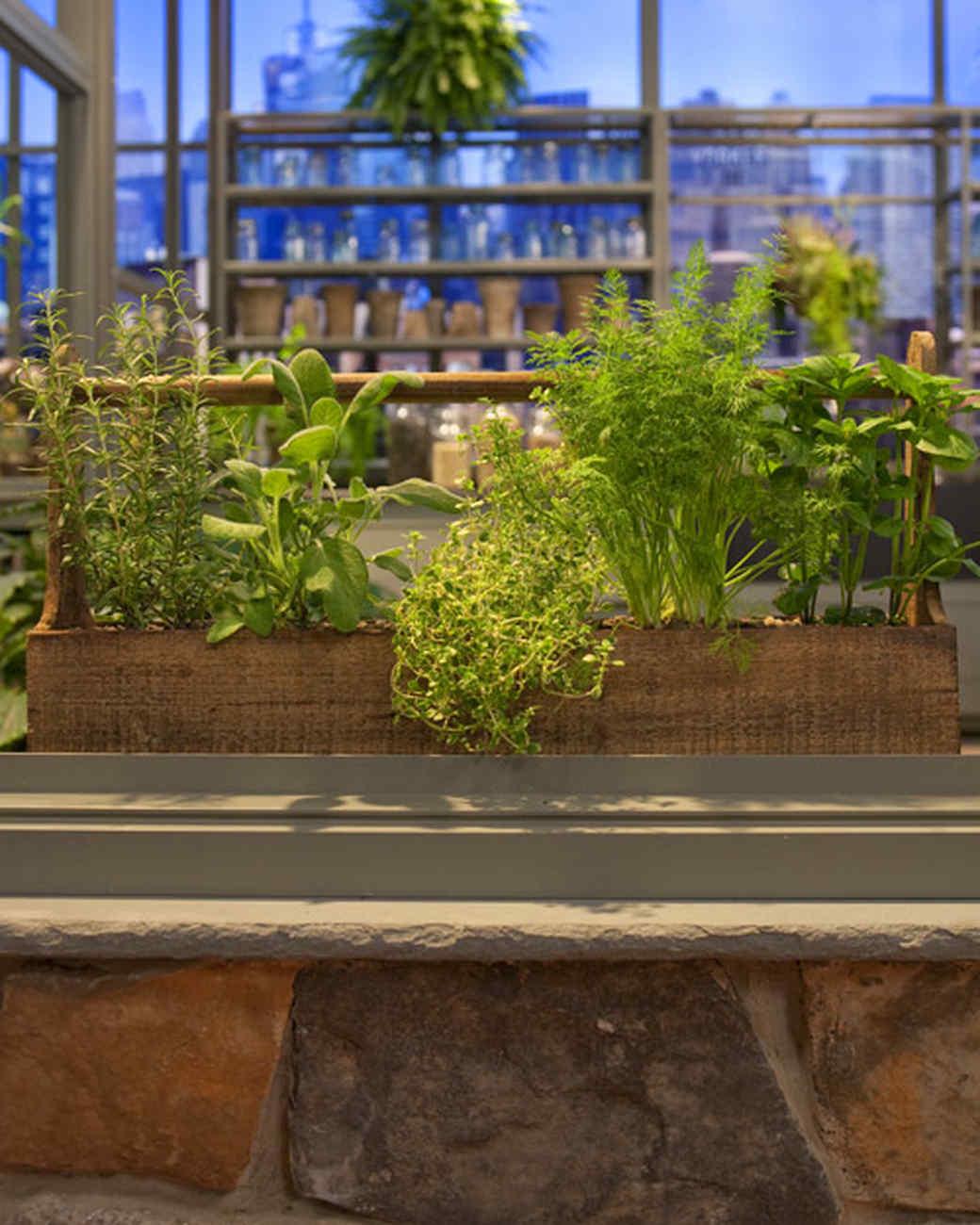 Container Herb Garden Video Martha Stewart