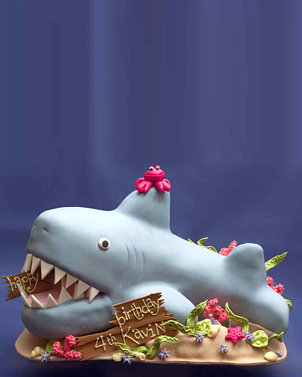 doer_0723_bethann_shark.jpg