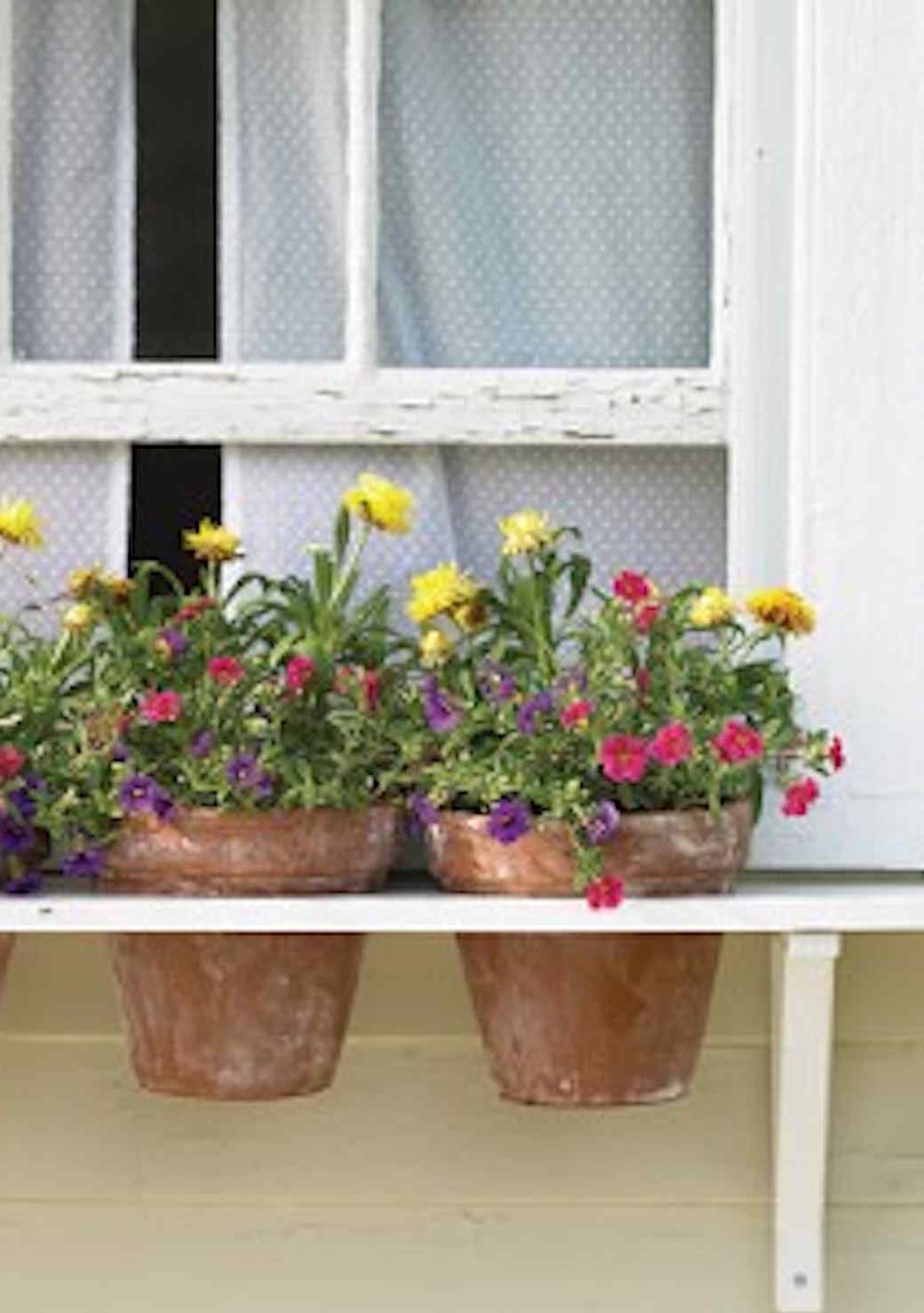 Цветочные контейнеры для балкона и террасы: 35 примеров креа.