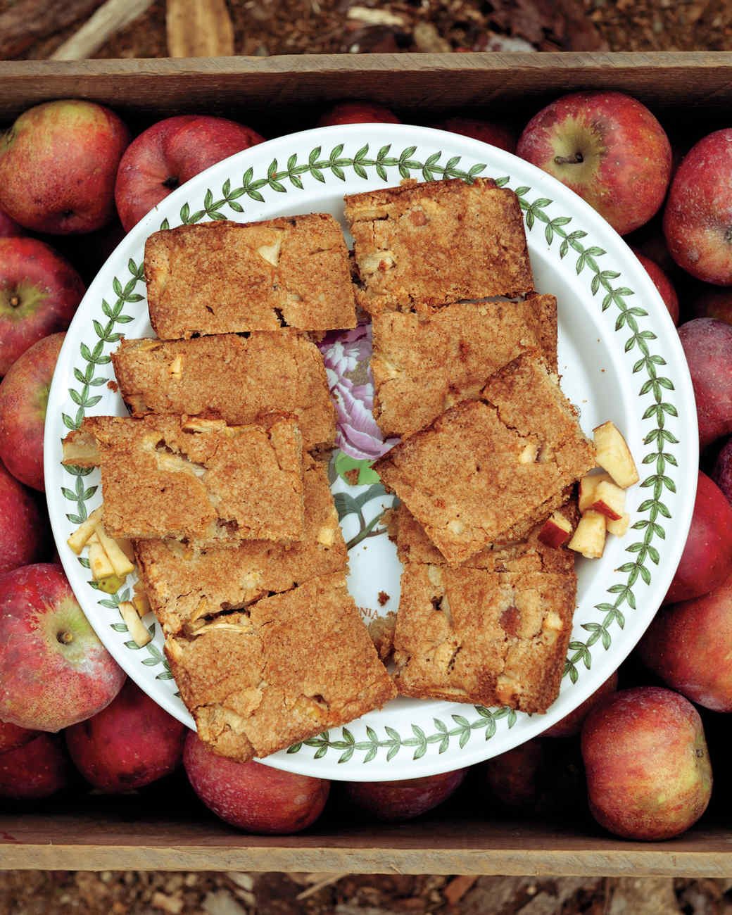 Apple Recipes Part - 16:  Apple Recipes Amazing Pictures