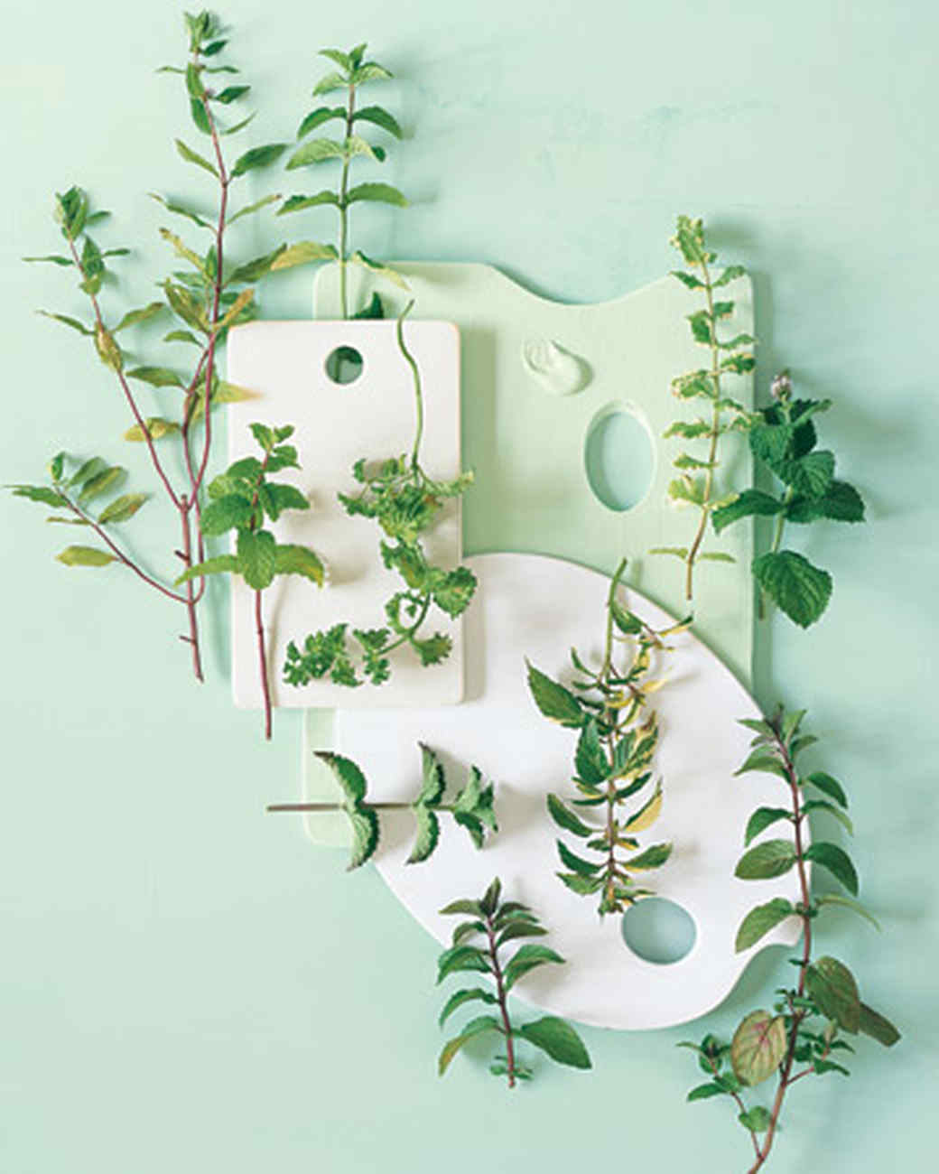indoor herb garden tricks for the most lush windowsill on the