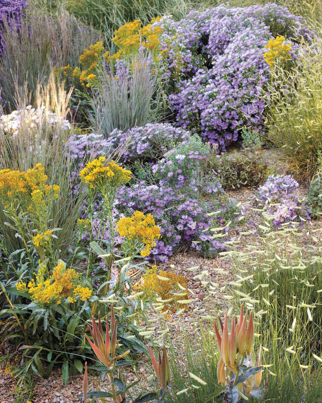 ogden-garden-157-d111601.jpg