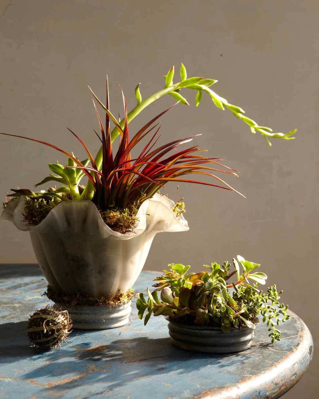 Unfussy flower arrangements martha stewart for Martha stewart floral arrangements