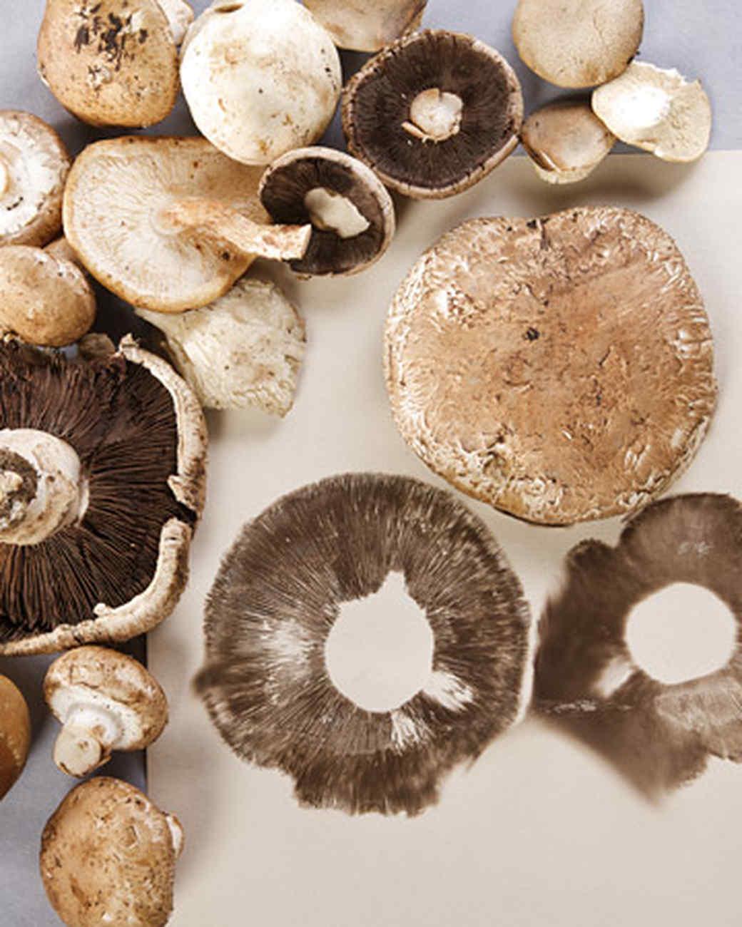 4045_111408_mushroomprint.jpg