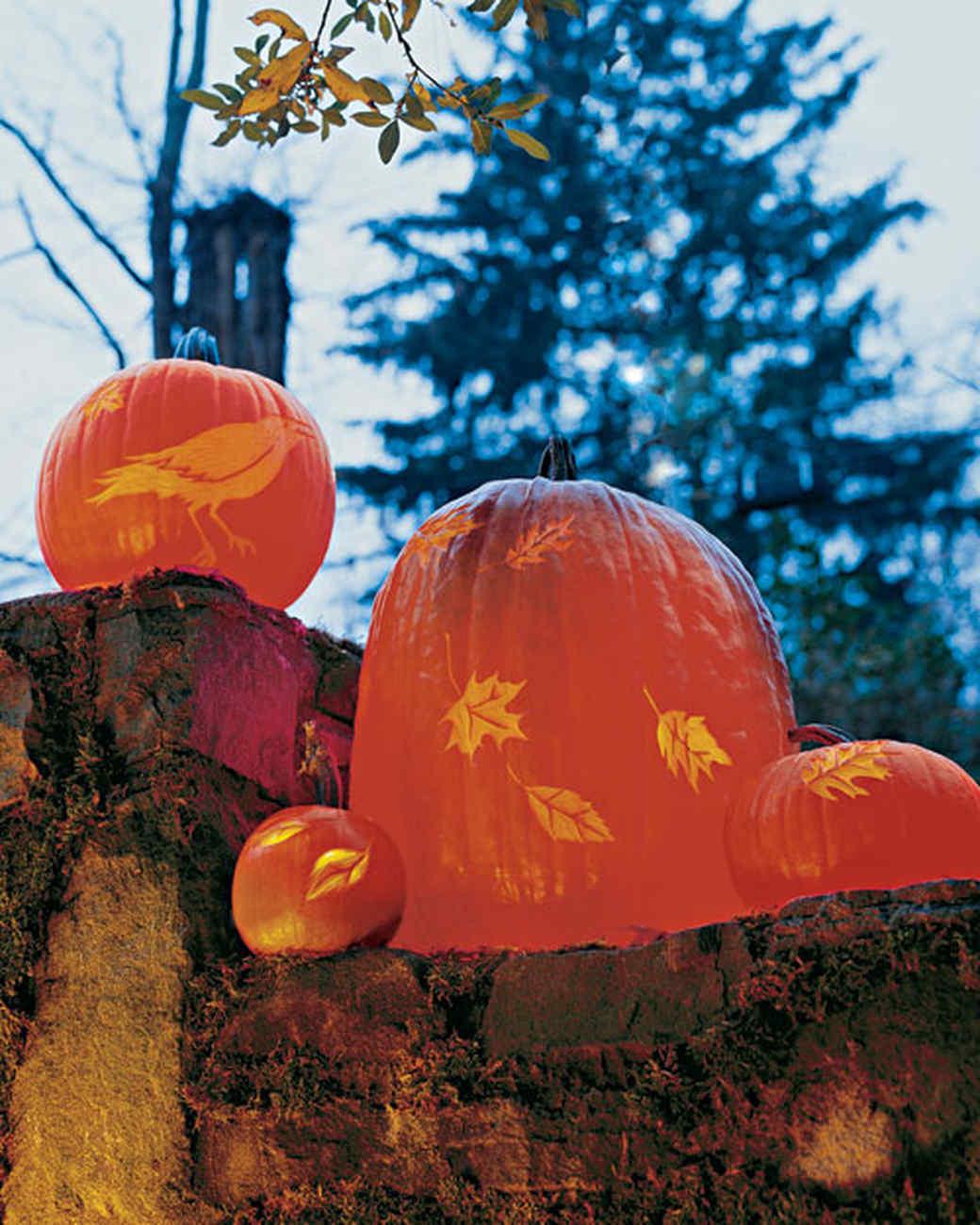 la102831_1007_pumpkinslit.jpg