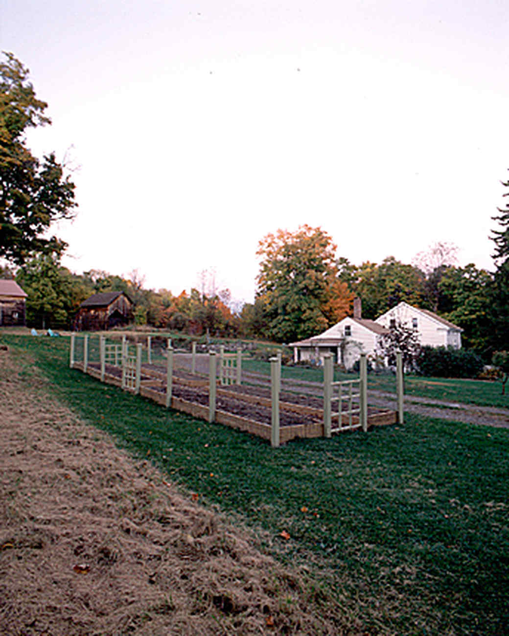 raised-beds-2-a97052-1215.jpg