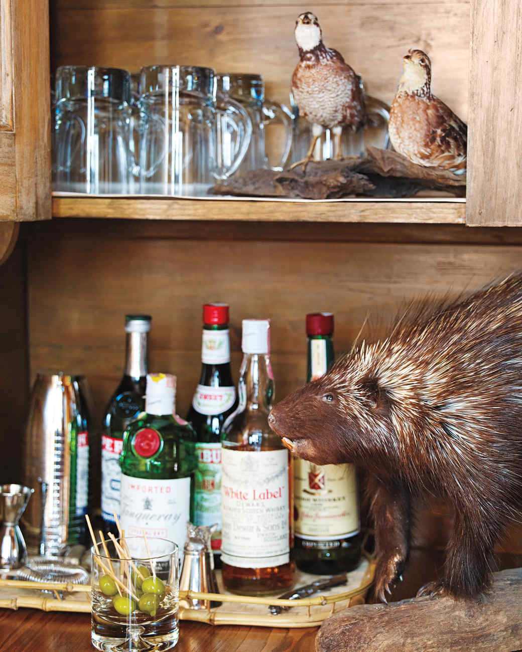 bar-taxidermy-1011mld106418.jpg