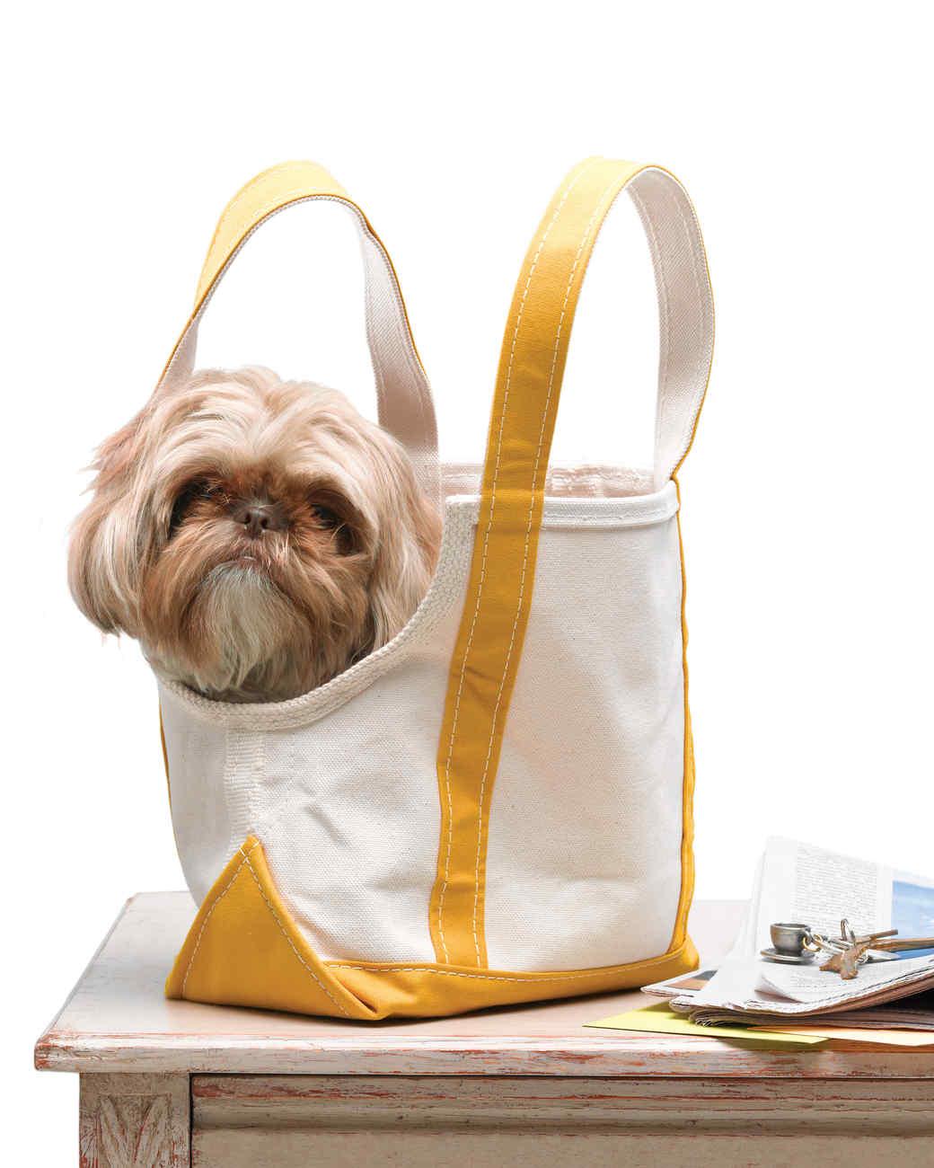 Canvas Tote Doggie Bag Martha Stewart