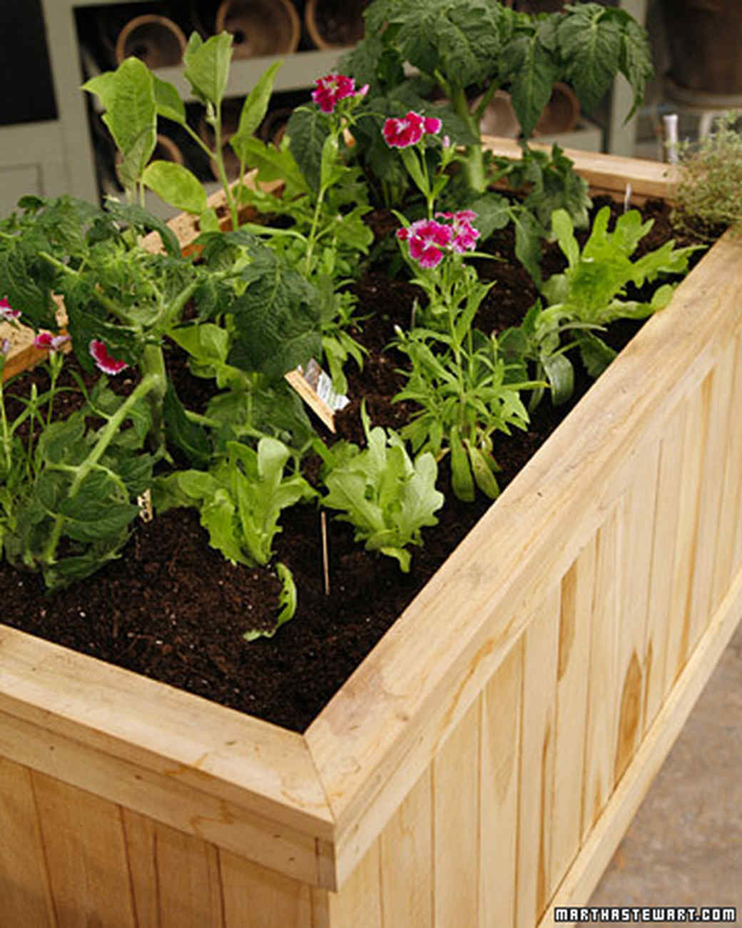 Vegetable garden ideas martha stewart for Balcony vegetable garden