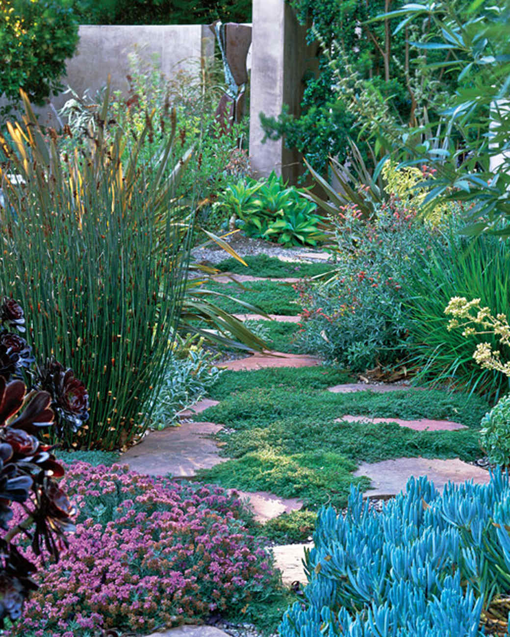 mla10490_0809_vought_garden7.jpg