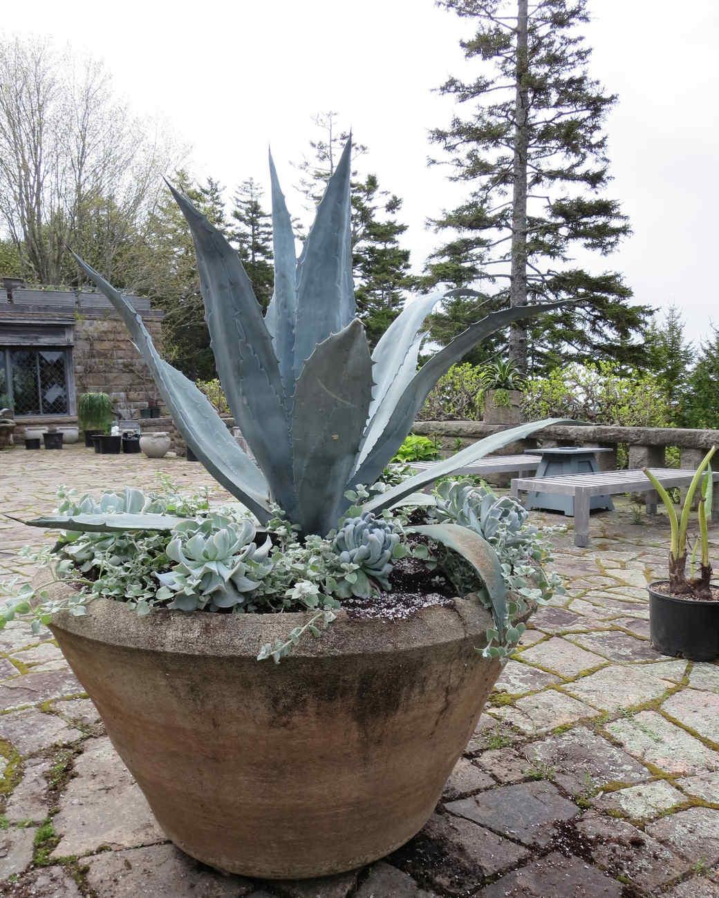 planting-urns-skylands-8-0514.jpg