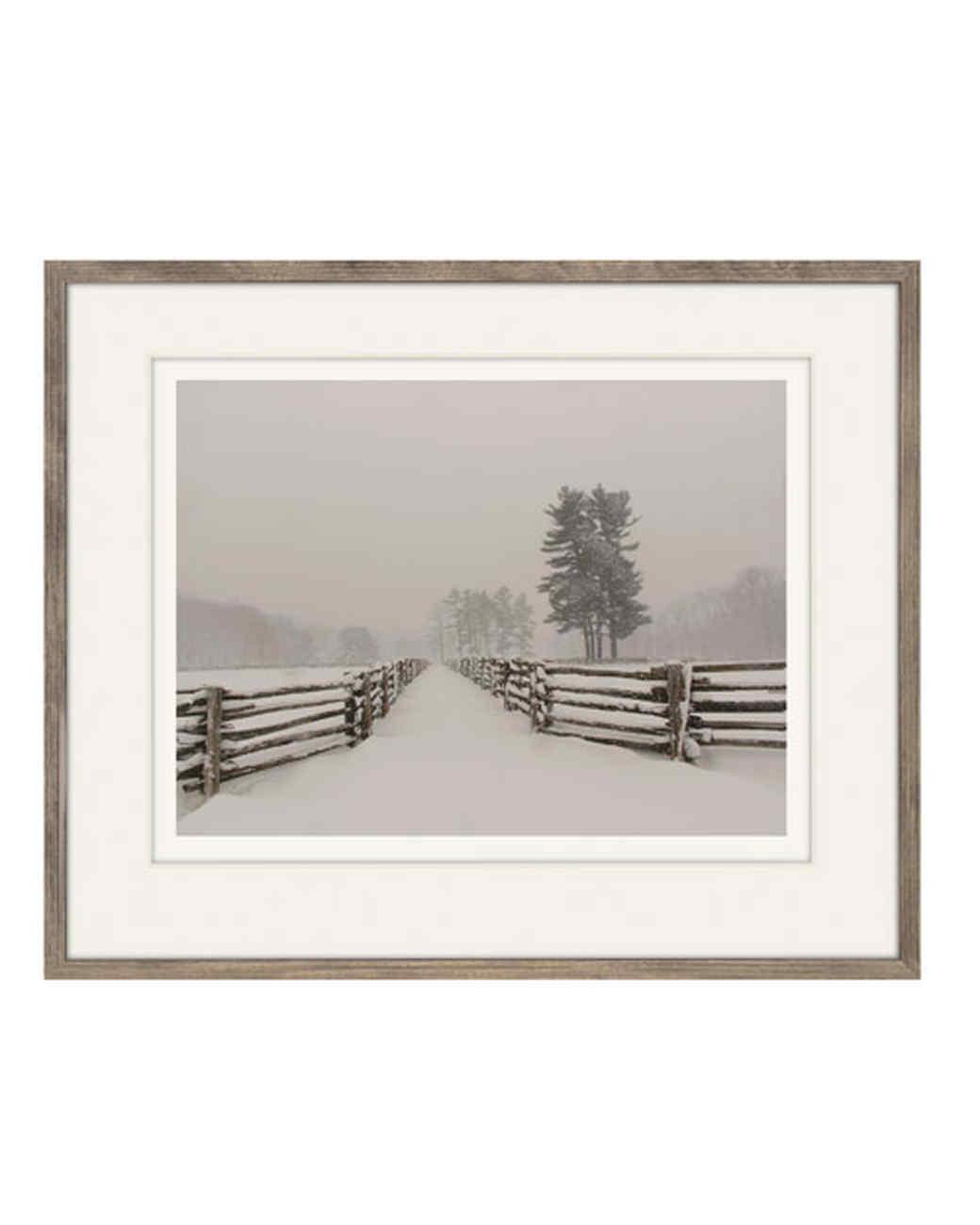 winter_white_spruce_fern_copy.jpg