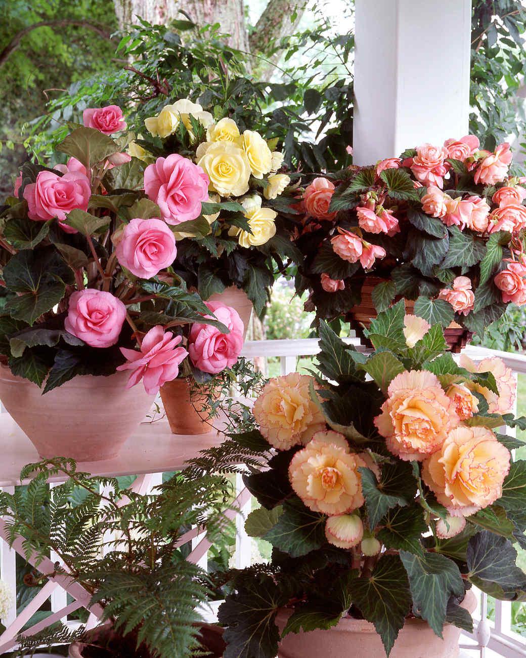 flower-arranging-a101014-porch.jpg