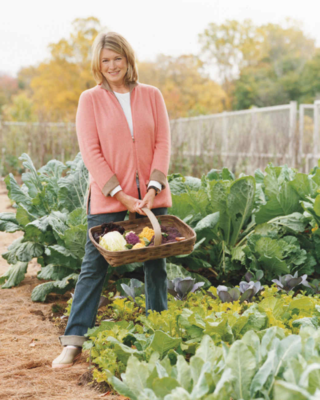 Cantitoe Corners Marthas Vegetable Garden Martha Stewart