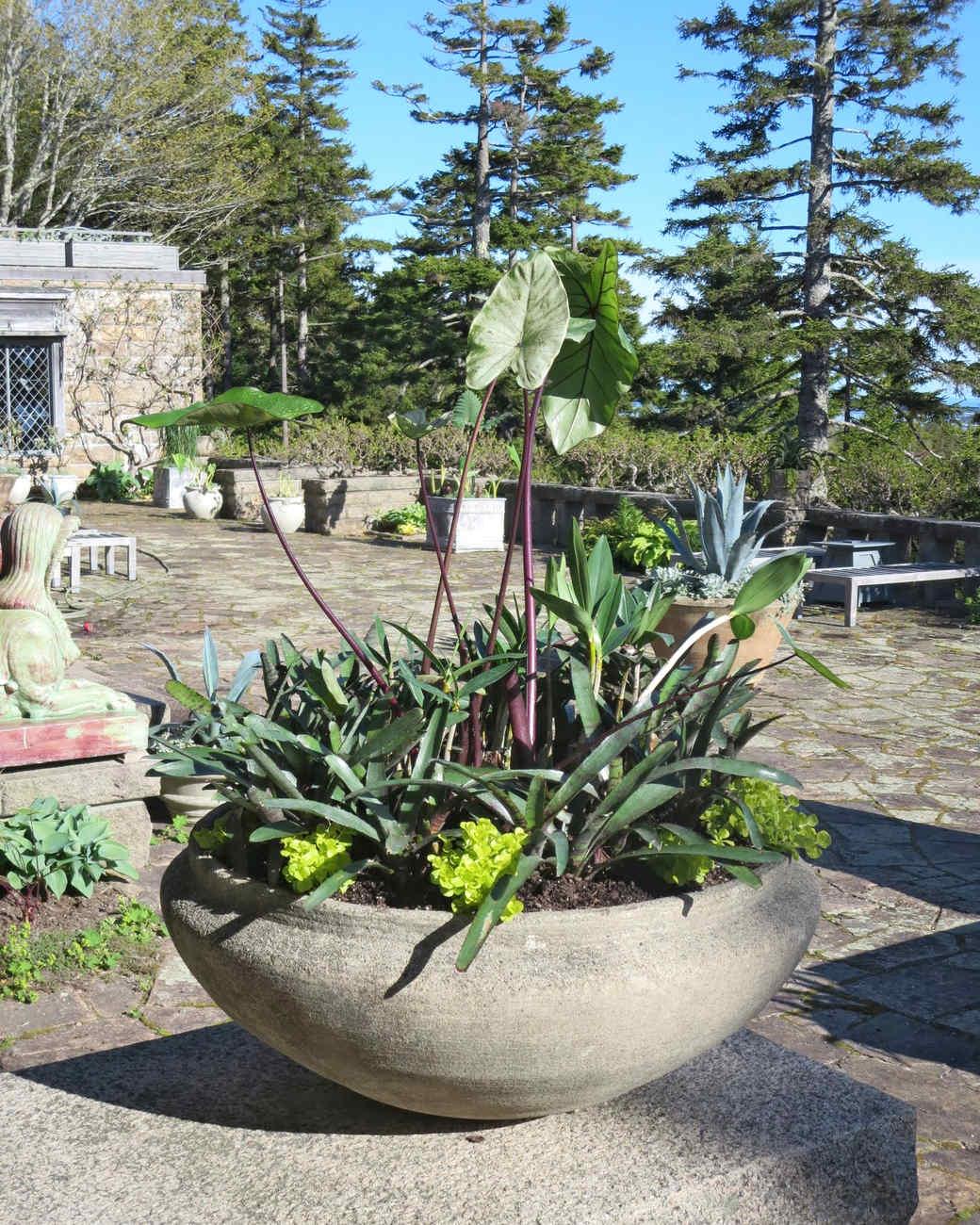 planting-urns-skylands-35-0514.jpg