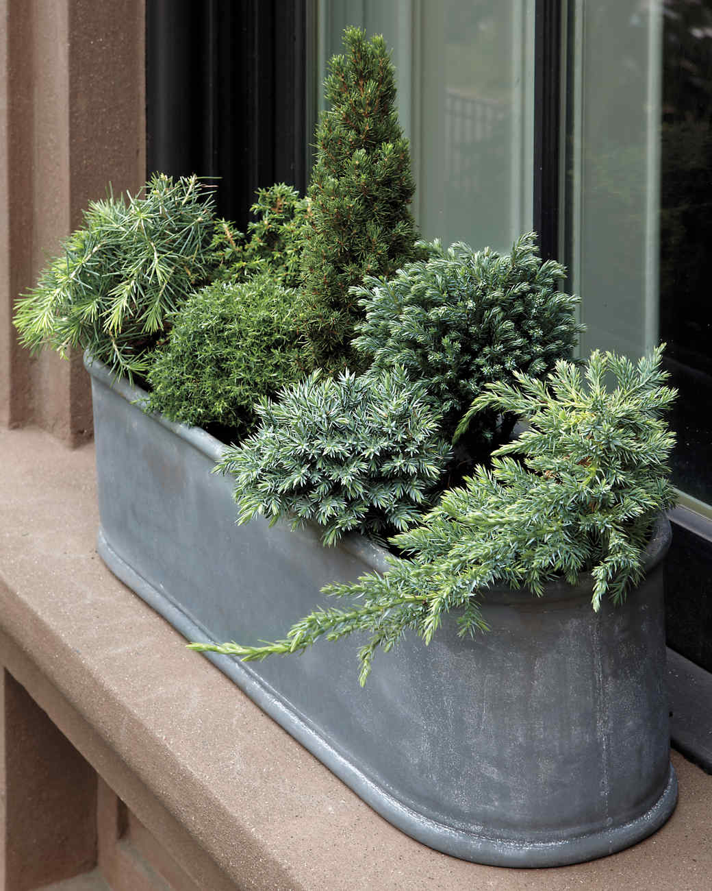 Container garden ideas for any household martha stewart for Outdoor planter ideas