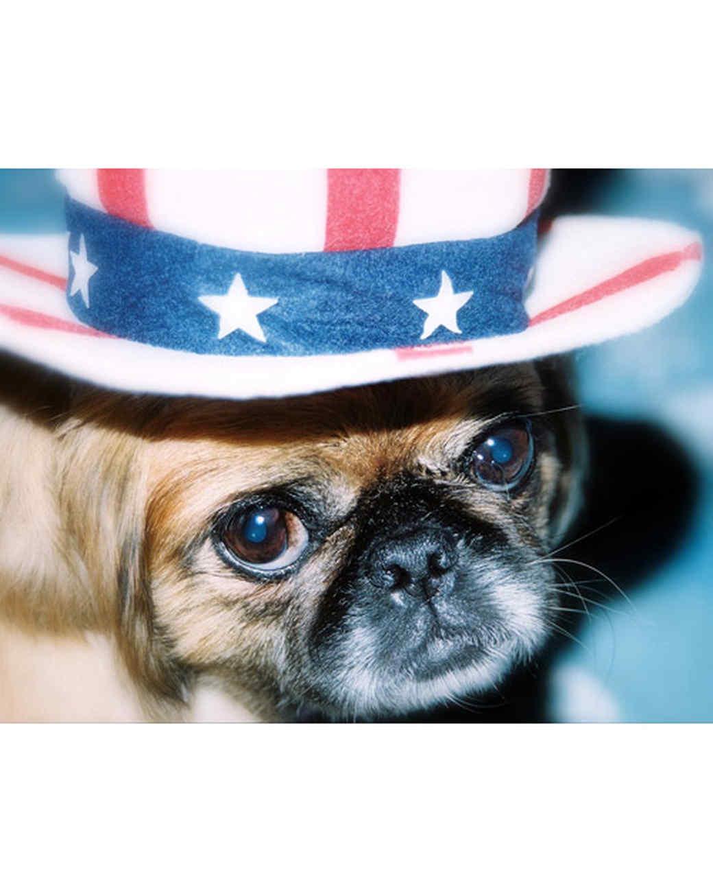 p_patriotic_10_9164290_13302191.jpg