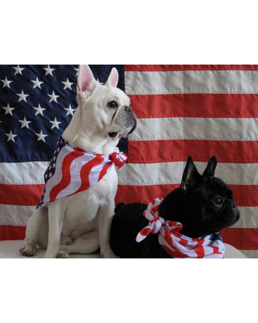 p_patriotic_10_9362530_11976005.jpg