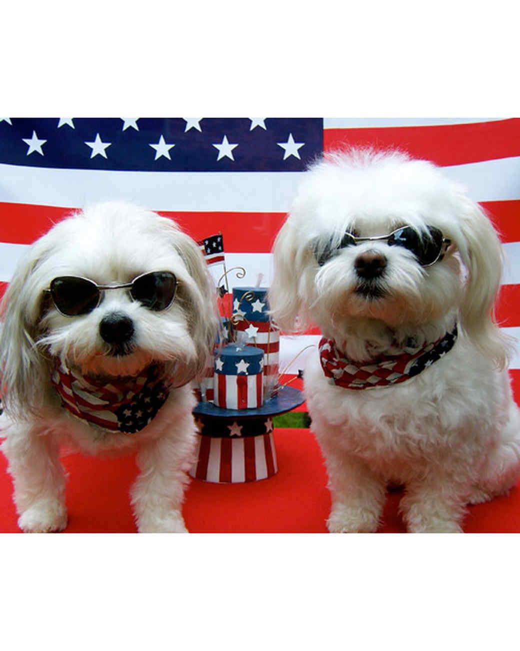 p_patriotic_10_9370703_19036065.jpg