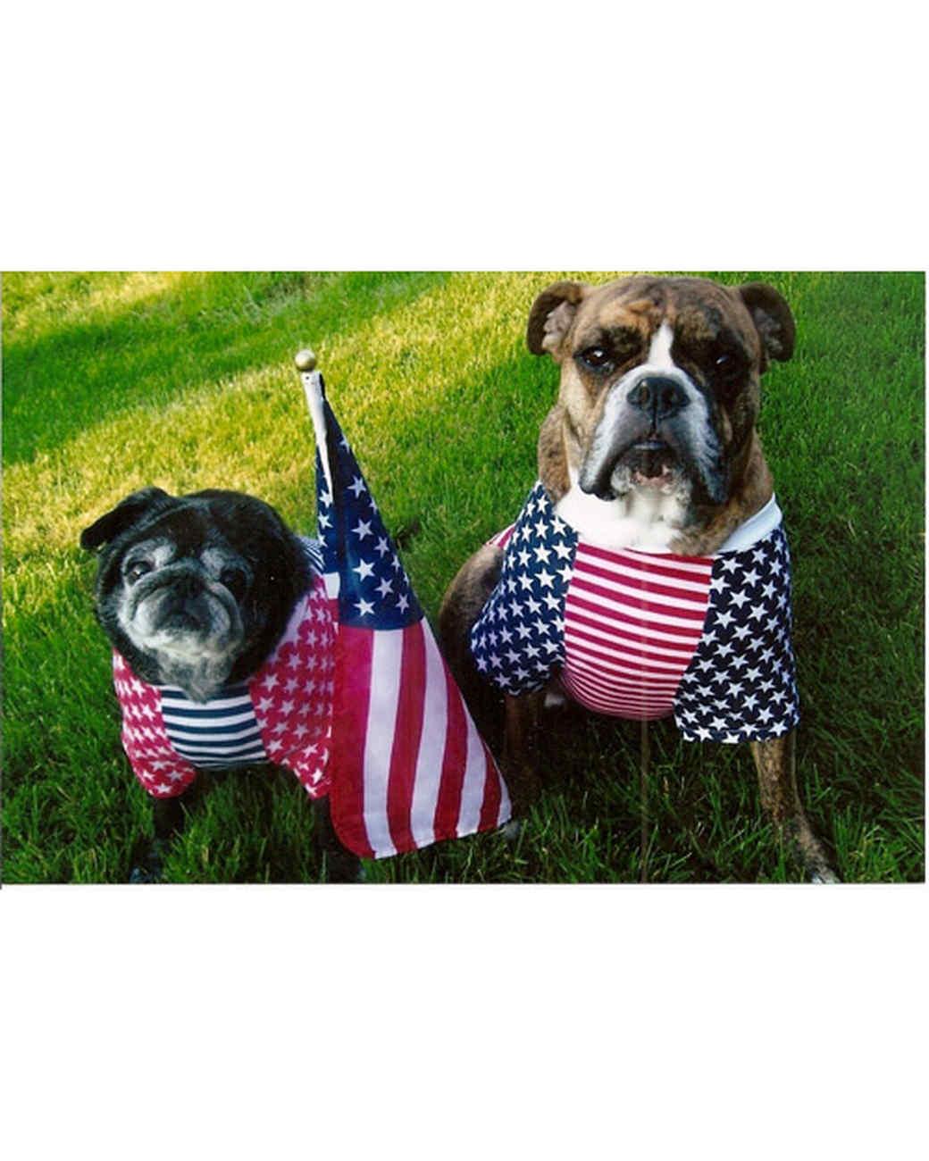 p_patriotic_10_9471745_13516036.jpg