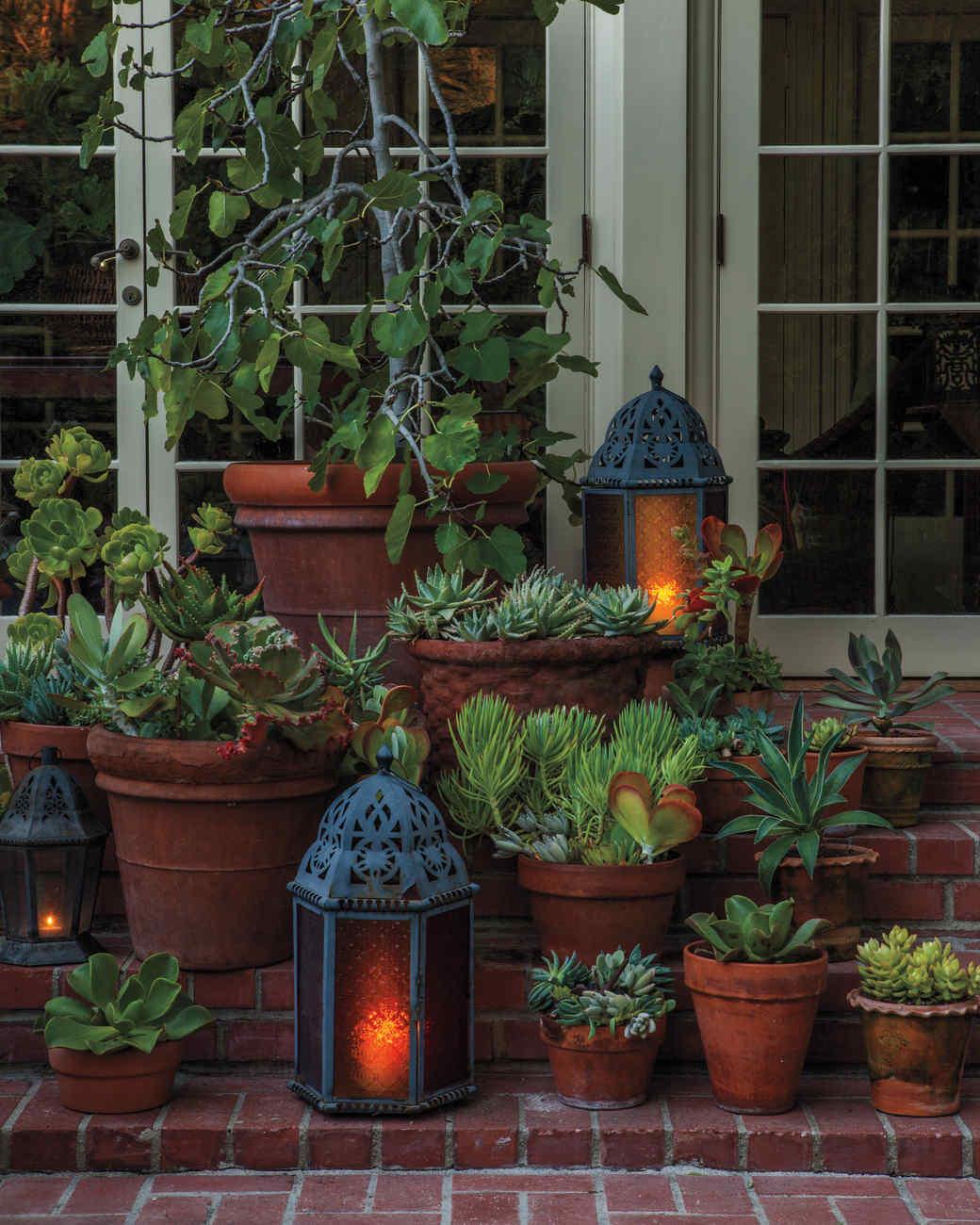 Decorative Flower Pots And Planters : Decorative flowerpots and planters martha stewart