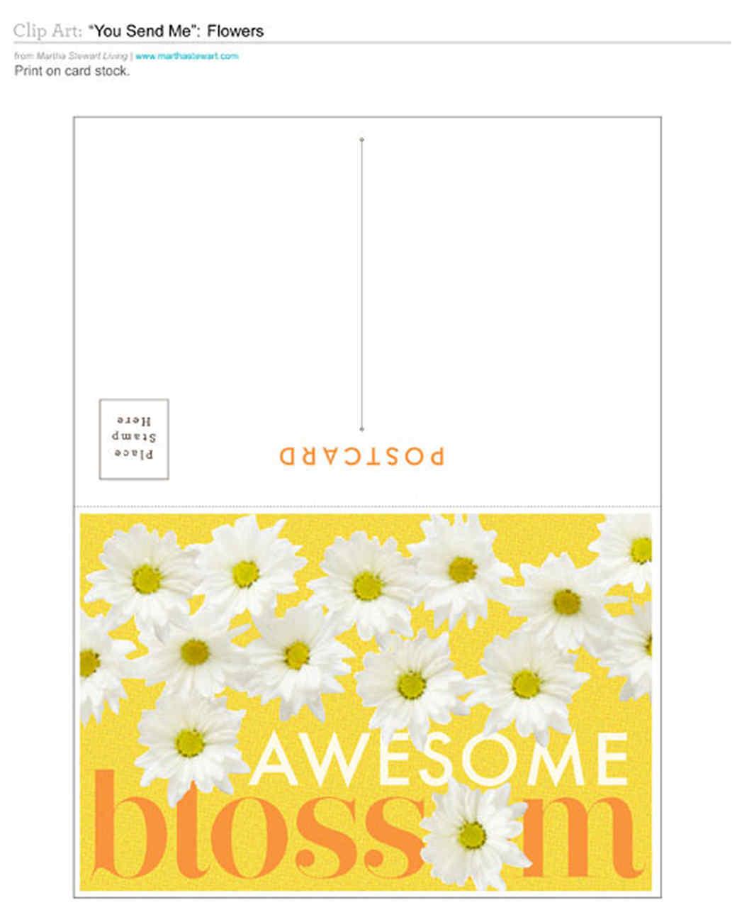poastcards-blossom-0811mld107292.jpg