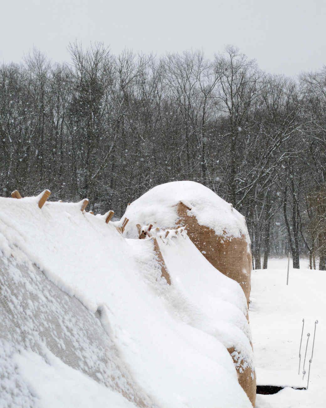 winterizing-the-garden-8-ma105573.jpg