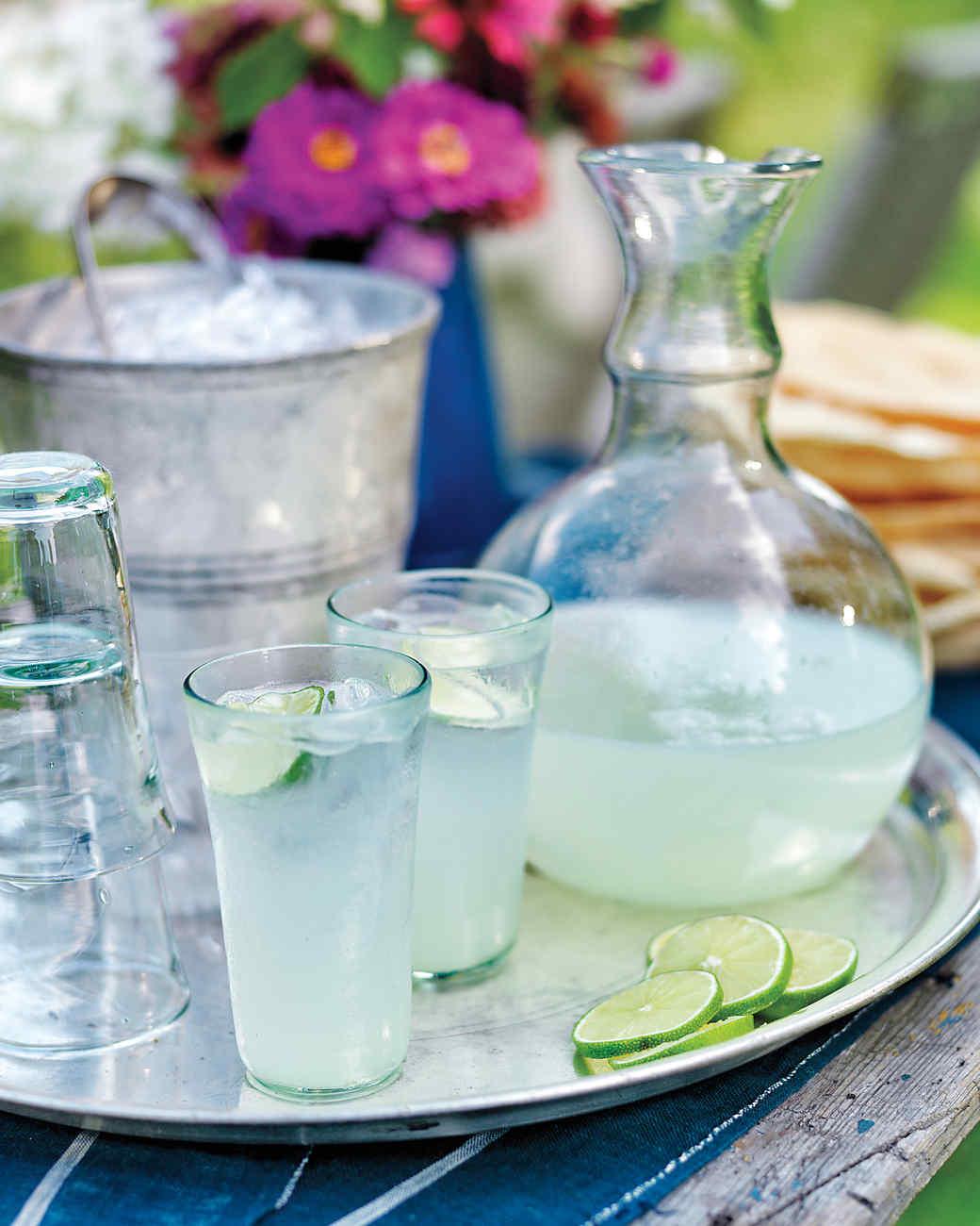 lime-drink-ee-summer-0156-md109287.jpg