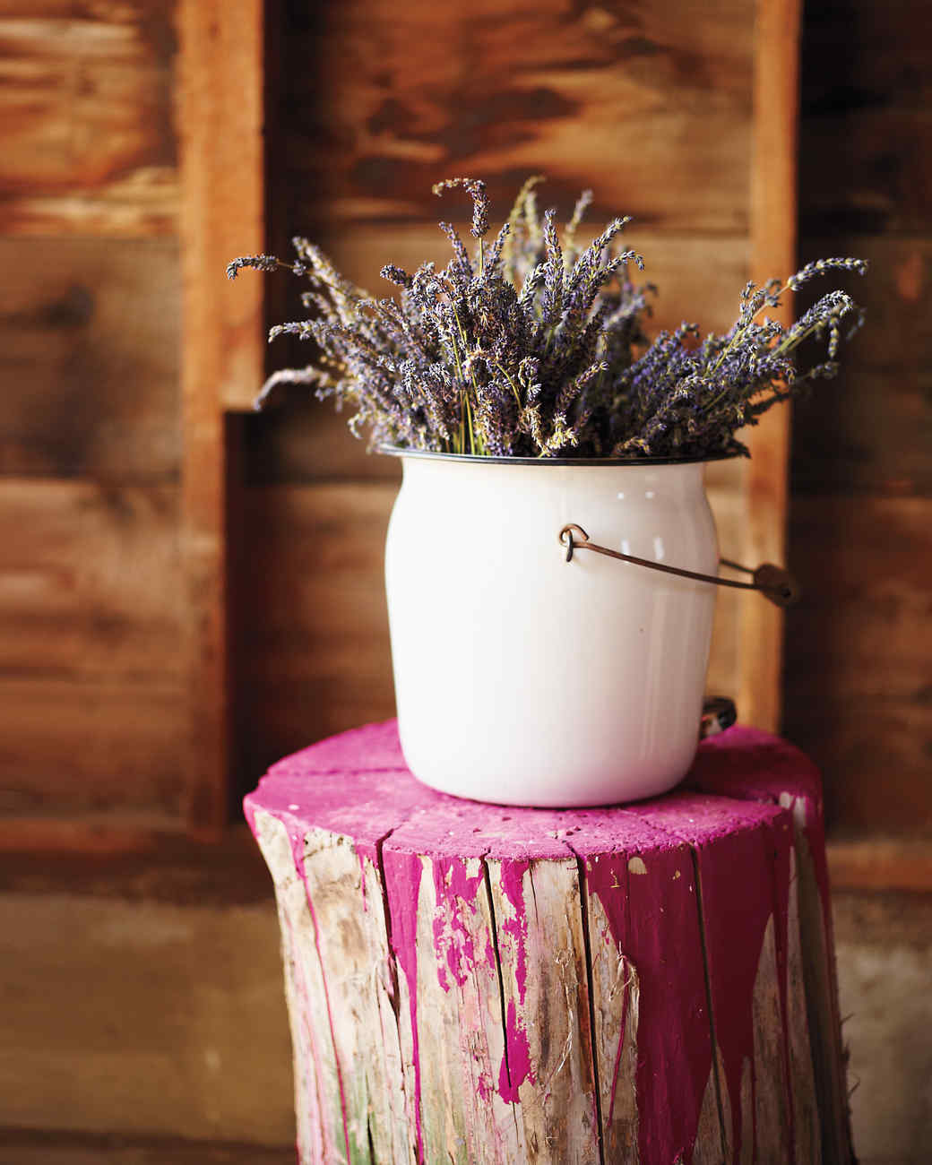 lavender-chontos-11-cf040024-ma120730.jpg