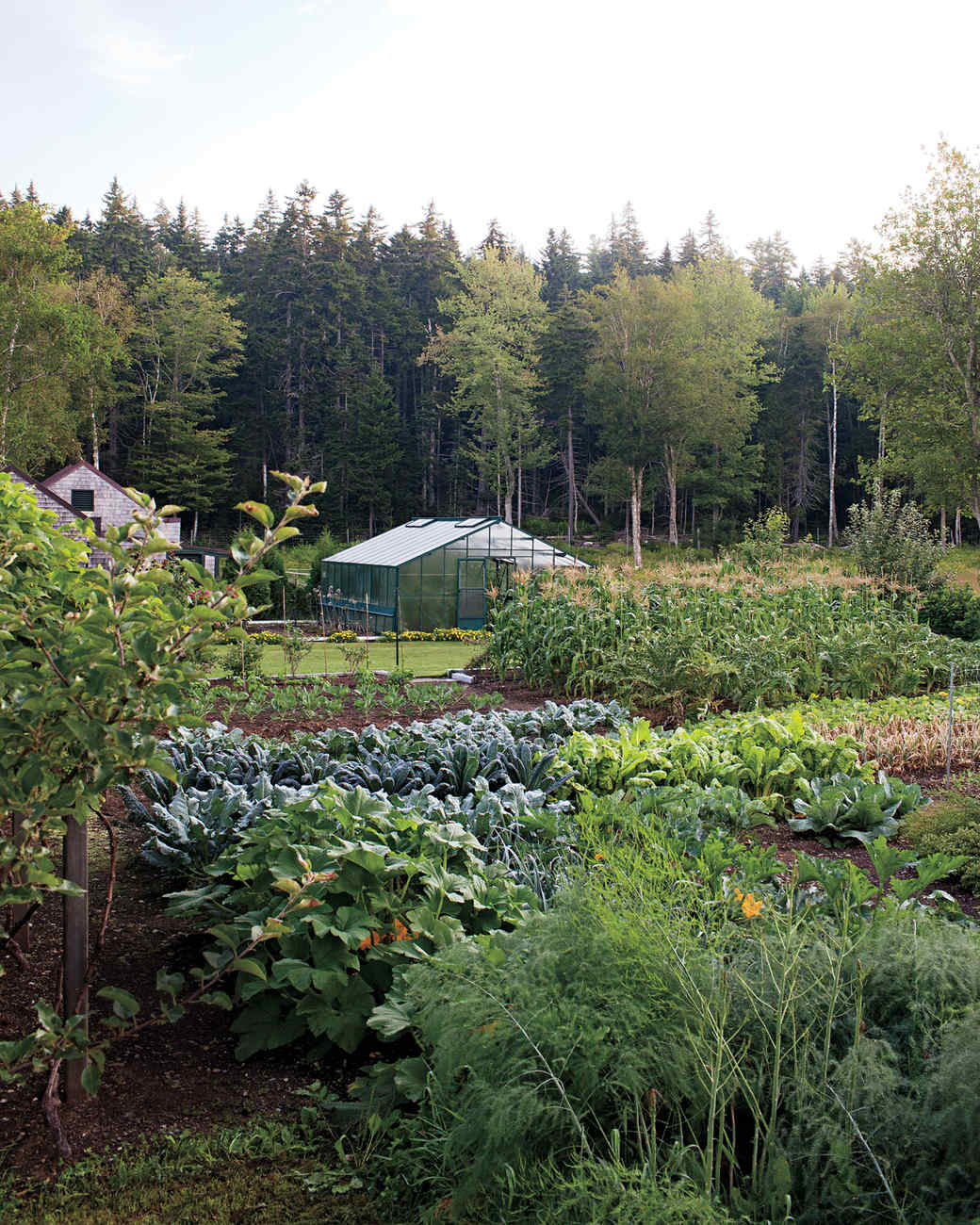 four-seasons-farm-garden-beds-md107849.jpg