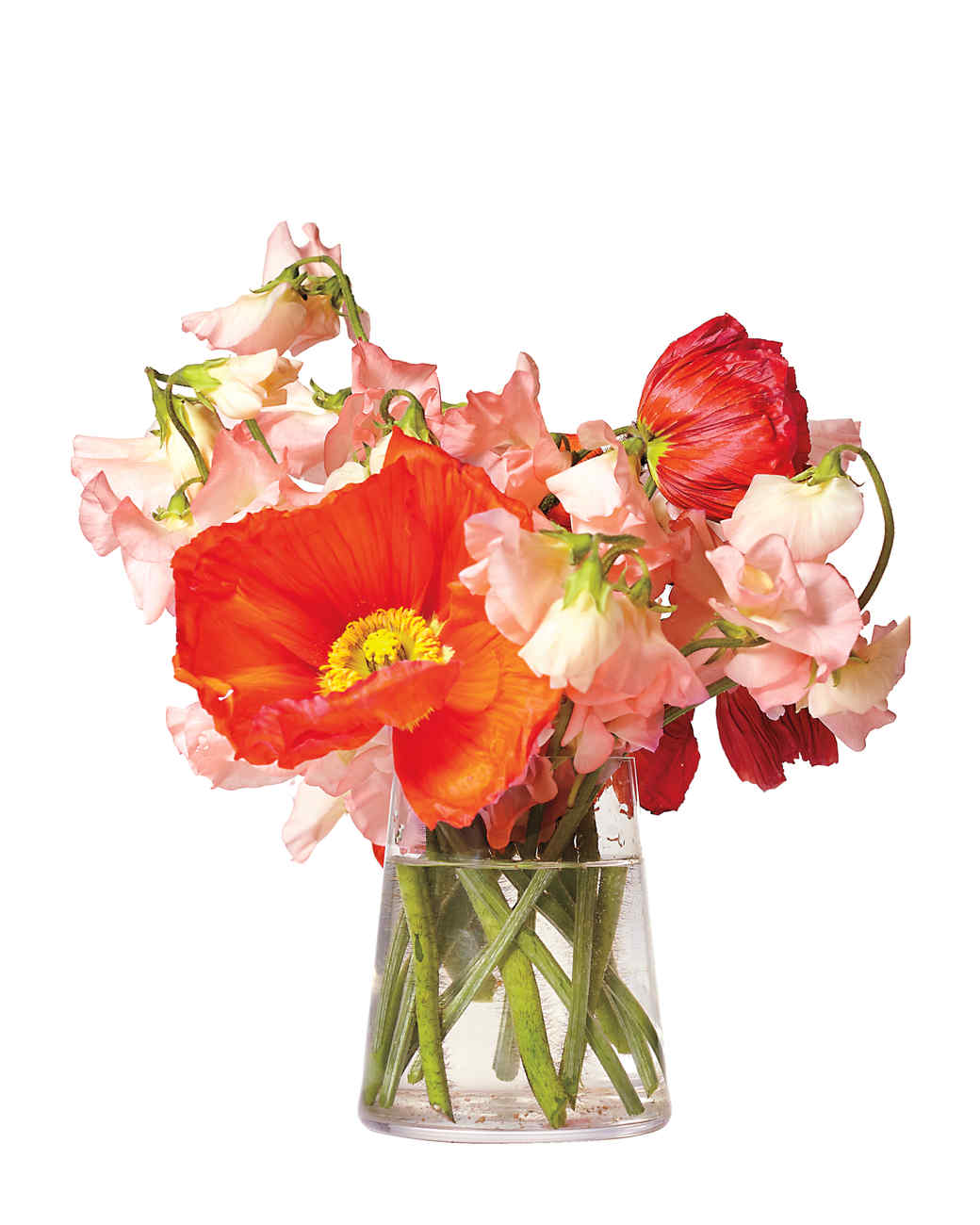 poppies-flowers-sweet-peas-342-d111021.jpg
