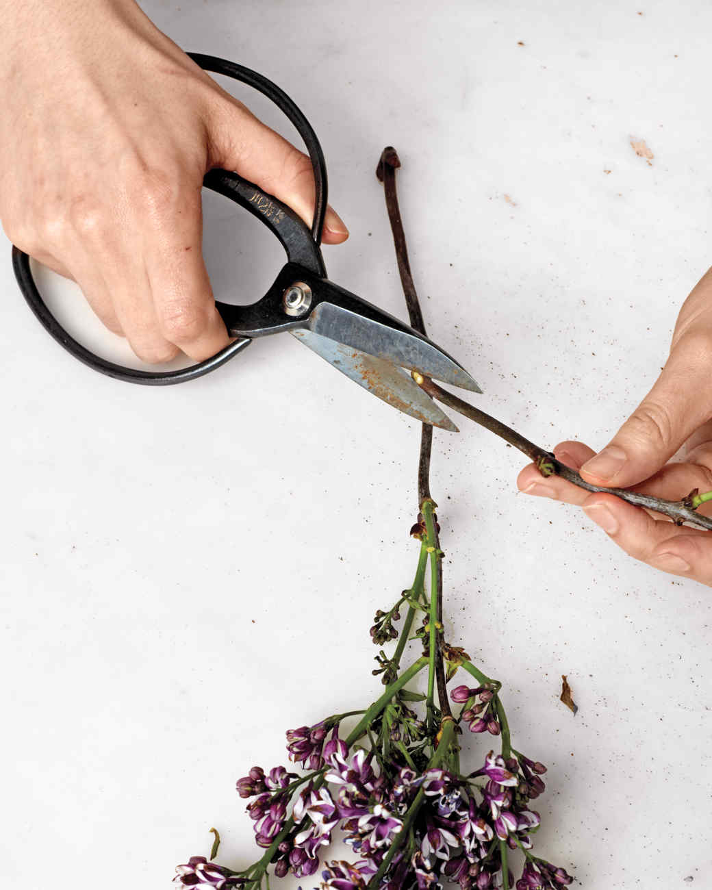 how-to-flower-arrangement-v5-45-d111001.jpg
