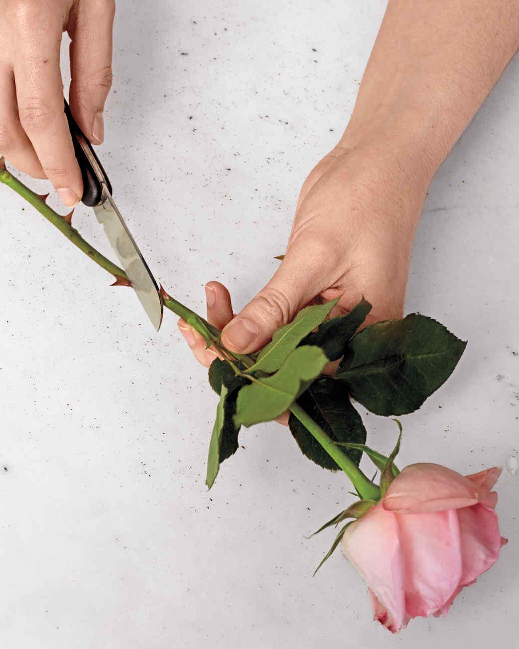 how-to-flower-arrangement-v9-54-d111001.jpg