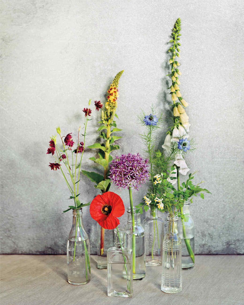 page-dickey-garden-flowers-md110307-139.jpg