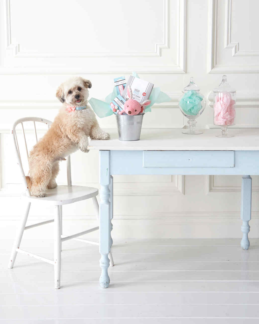 Go Fetch! Host an Easter Egg Hunt for Your Dogs