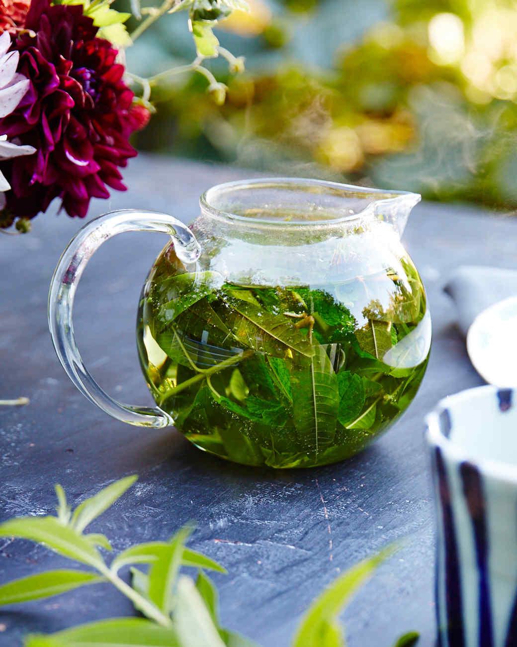 lemon-verbena-tea-frances-palmer-516-d110591.jpg