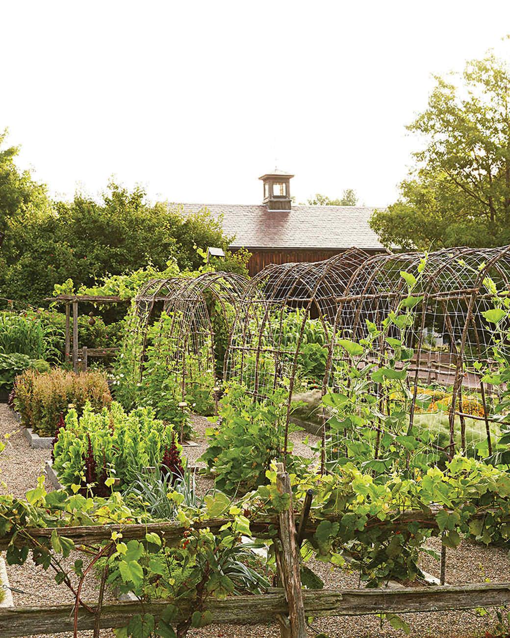 rockefeller-kitchen-garden-overview-385-d112371.jpg