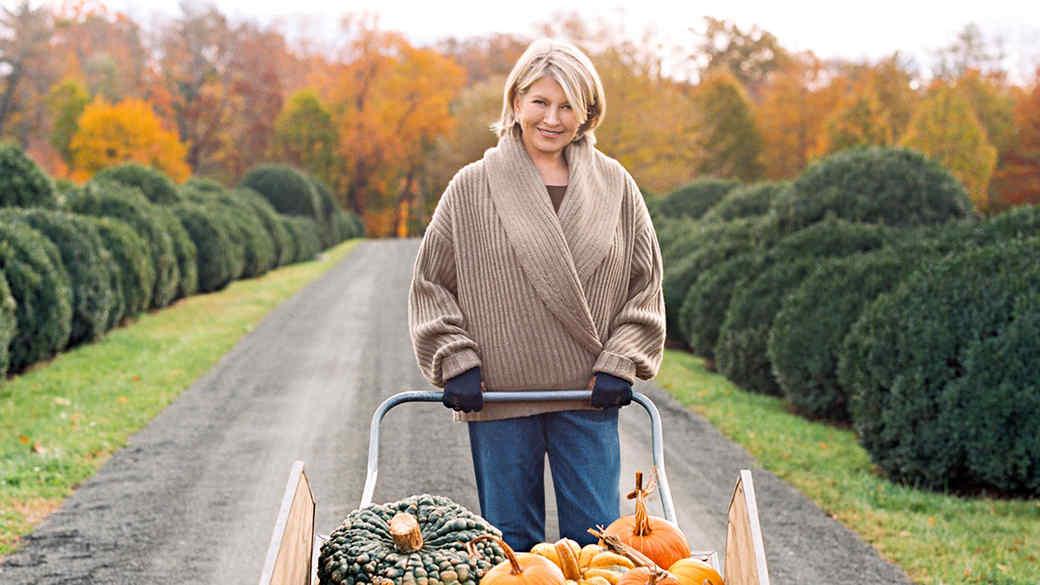 martha pumpkins october 2017 cover