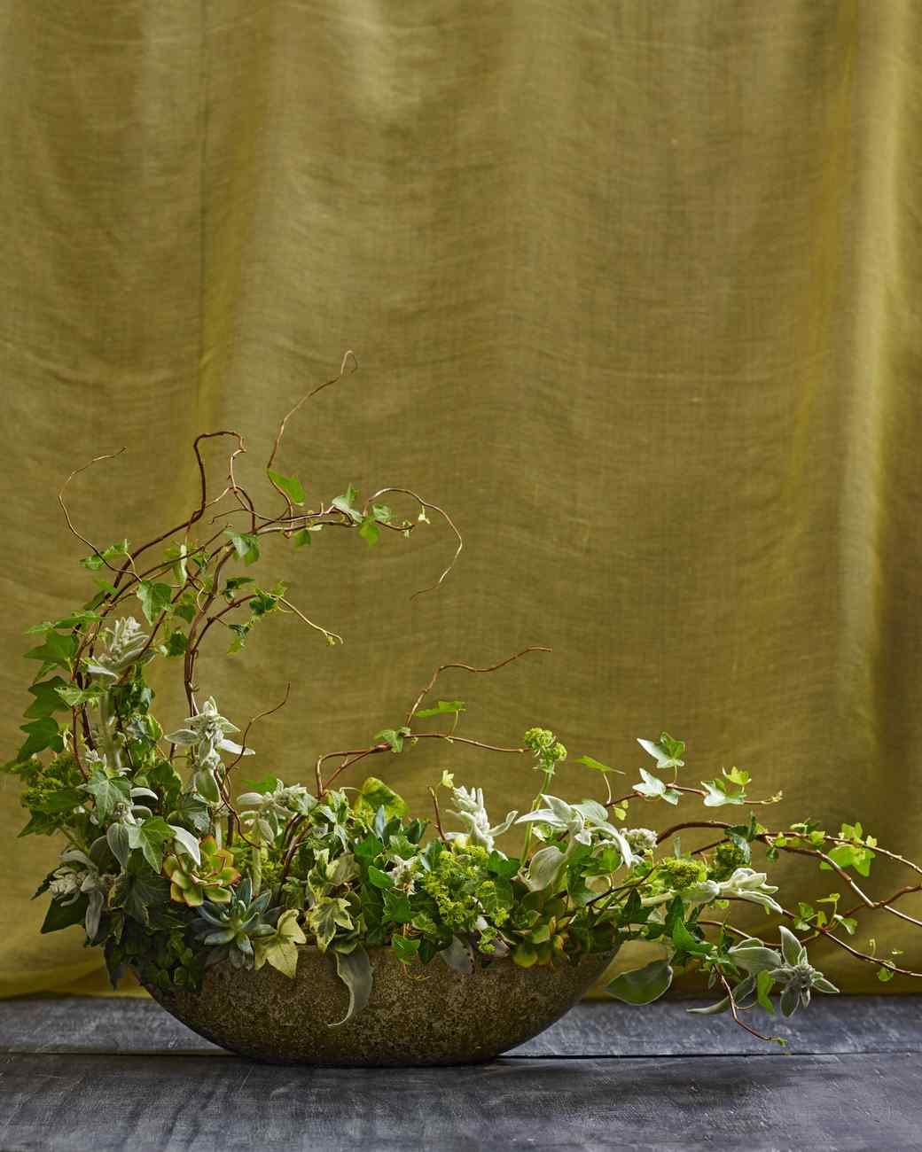 dandelion-ranch-clover-chadwick-green-236-d112251.jpg